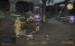 """Final Fantasy XIV: A Realm Reborn - That's one big """"Horny Toad"""""""
